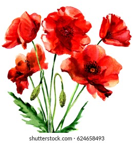Romantic summer red poppy flower isolated, watercolor illustration on white