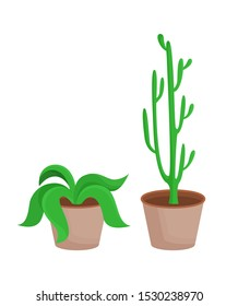 Room plants with leaves set potted flowers broad leaf collection of eco elements cactus in pot and green plant isolated on raster illustration
