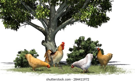 Rooster and chickens, tree and bush - isolated on white background