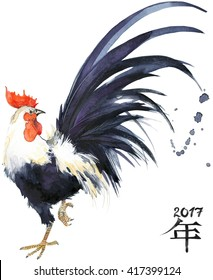 Rooster. Watercolor Illustration.