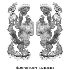 Rorschach test isolated on white illustration, random abstract black and white background. Psycho diagnostic inkblot test.