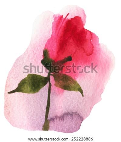 Rose Aquarelle Stock Illustration 252228886 Shutterstock