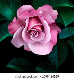Rose is the basis of all beauty that is created by nature forever. Rose, the bearer of the soul