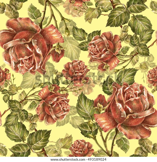 Rose color pencil seamless pattern