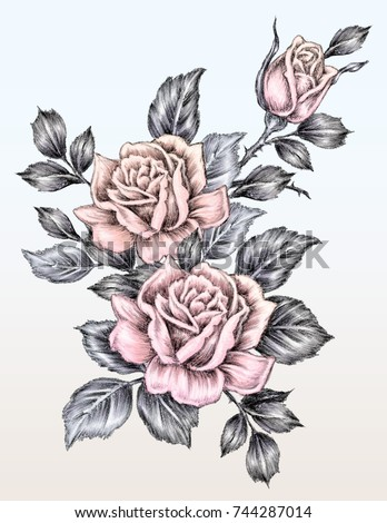 rose drawing tattoo styleのイラスト素材 744287014 shutterstock