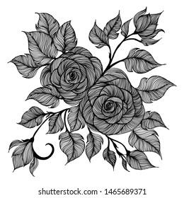 rose flower drawing line art beautiful