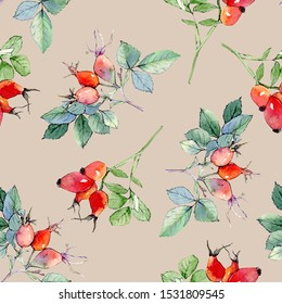 Rose hip watercolor illustration pattern