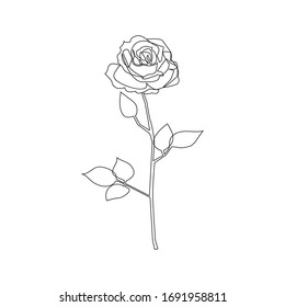 Rose One Line Drawing. Continuous Line Drawing. Black White Botanical Artwork. Minimalist Floral Design. Raster copy.