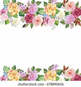roses border.watercolor