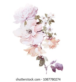 roses bouquet.botanical.illustration. this picture may be used as background, decoration or object