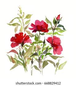 Roses bush watercolor sketch. Hand drawing illustration