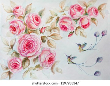 Roses drawn with watercolor, hummingbirds, art, colibri