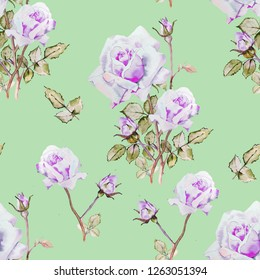 Roses Flowers watercolor illustration pattern