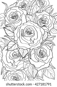 Roses. Jpeg version.