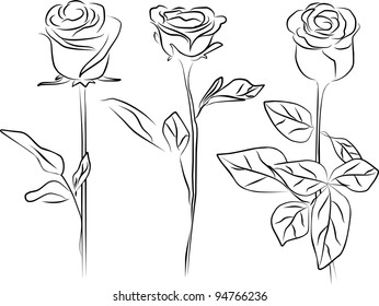 roses silhouette - white background