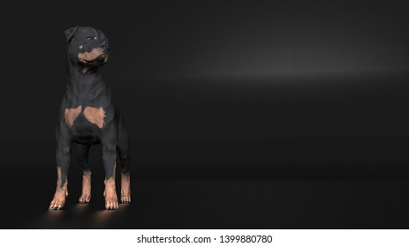 Rottweiler dog standing and looking away 3d rendering