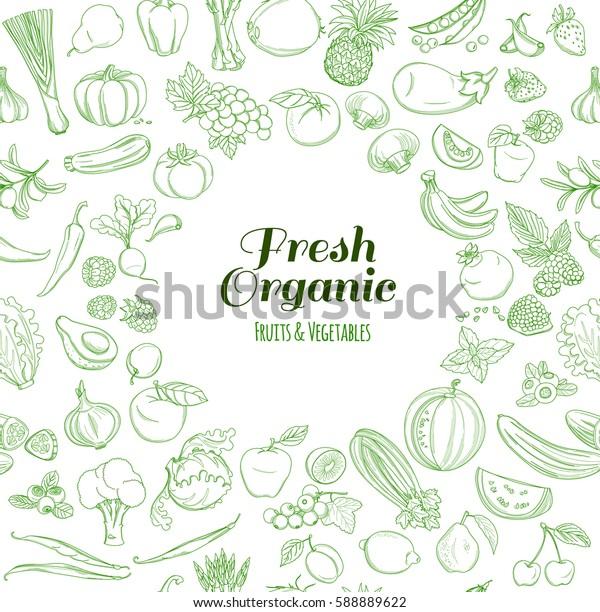 Round Frame background pattern of organic farm fresh fruits and vegetables. illustration. Outline line flat style design. White backdrop.