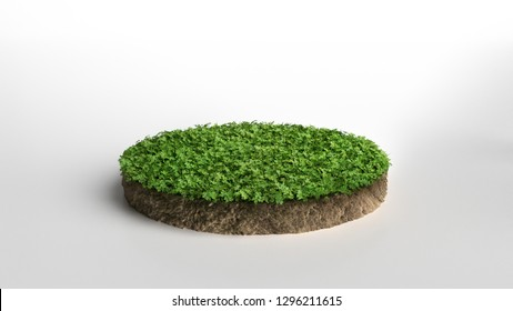 Round green grass land piece isolated on white background. 3D illustration
