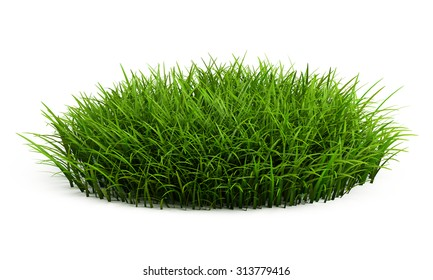 Round patch of fresh grass isolated on white