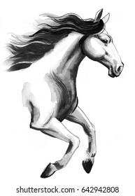 Running horse sketch