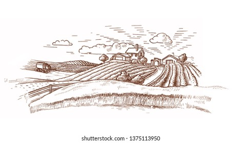 Rural landscape with a farm in engraving style/ Hand drawn