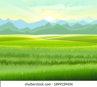 Rural landscape. Hills and meadows. Pastures and farmland. Beautiful nature view. The horizon is distant. Country farm land plot. Illustration.