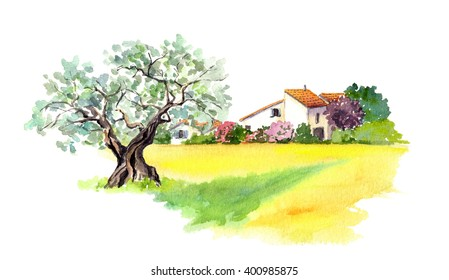 Rural provencal farm house, olive tree and yellow field - wheat, sunflower - in Provence, France. Watercolor