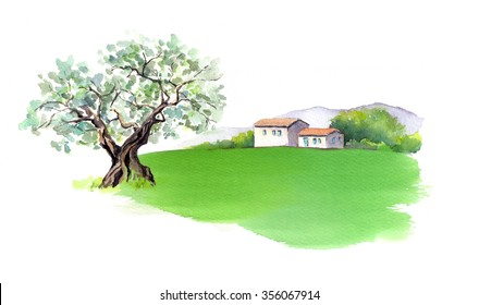 Rural provencal house, olive tree and field in Provence, France. Watercolor
