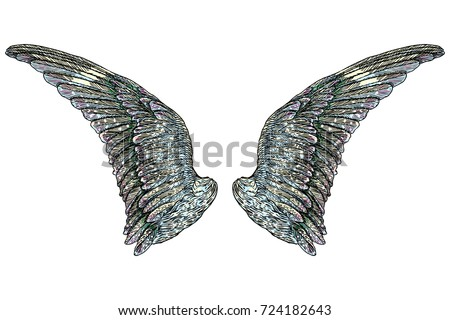 Sacred Angel Bird Wings Symbolism Lightness Stock Illustration