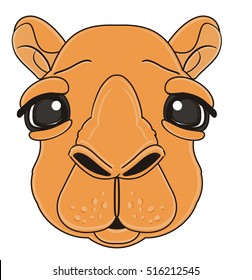 sad muzzle of camel