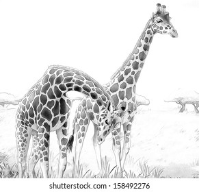 safari giraffes coloring page illustration 260nw