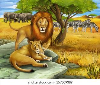 Safari - lion - illustration for the children
