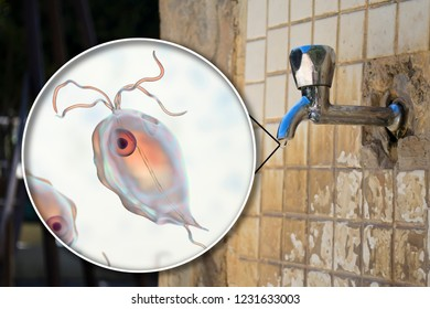 Safety of drinking water concept, 3D illustration showing Pentatrichomonas hominis protozoan in water. Also known as Trichomonas hominis or T. intestinalis, may cause diarrhea