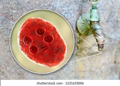 Safety of drinking water concept, 3D illustration showing cysts of Giardia intestinalis protozoan, the causative agent of giardiasis and diarrhea, contaminating drinking water
