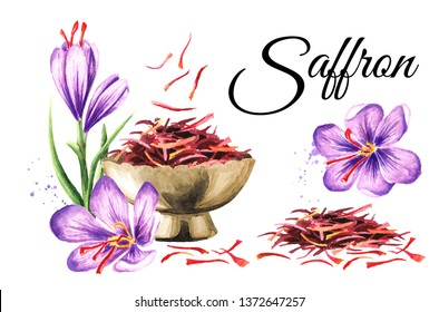 Saffron card. Watercolor hand drawn illustration,  isolated on white background