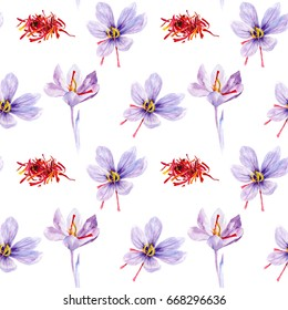 Saffron seamless pattern. Crocus flowers hand draw watercolor illustration.