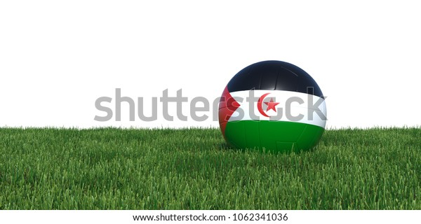 Sahrawi Arab Democratic Republic flag soccer ball lying in grass, isolated on white background. 3D Rendering, Illustration.