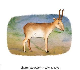 Saiga - animal endangered (saiga tatarica). Saiga on watercolor landscape background.