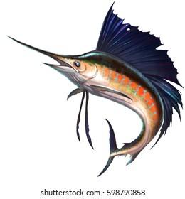 Sailfish on white. Marlin fish sailfish isolate realistic illustration. Fish sword in a jumping fish sailboat.
