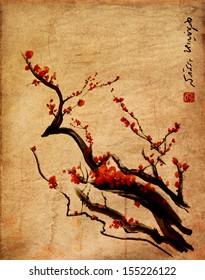 Sakura, cherry blossom plum chinese brush painting Red cherry blossom chinese brush painting