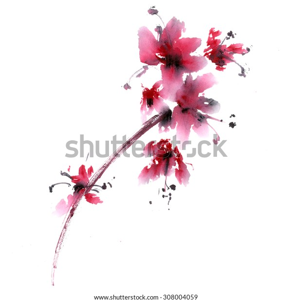 Sakura flower. Watercolor and ink illustration in china style sumi-e. Oriental traditional painting.