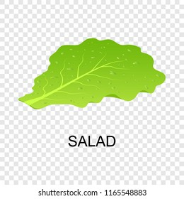 Salad icon. Isometric of salad icon for on transparent background