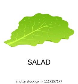 Salad icon. Isometric of salad icon for web design isolated on white background