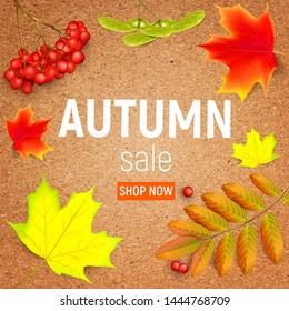 Sales banner on a crafting paper with maple autumn leaves and rowan branches with ashberry . Autumn maple leaf and red rowan branches with ashberry on a crafting paper.