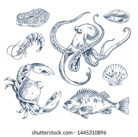 Salmon steak and perch, shrimp and crab, octopus and mussel and common cockle clam. Seafood variation monochrome poster with sketch illustration.
