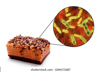 Salmonellosis, salmonella toxicoinfection, medical concept, 3D illustration showing cake as a common source of food infections and close-up view of Salmonella bacteria contaminating food
