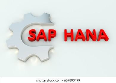 SAP HANA gear wheal white background 3d illustration