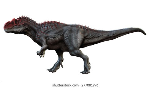 Saurophaganax was an allosaurid that lived during the Jurassic period. It was the largest known theropod from the Jurassic shadowing Allosaurus and even longer than Tyrannosaurus Rex.