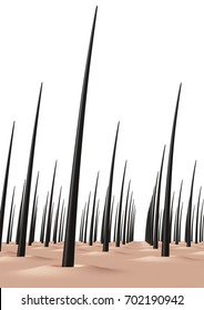 scalp. 3D illustration,