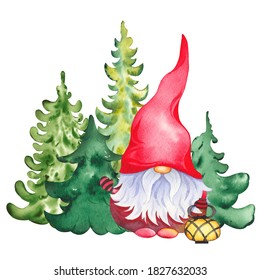 Scandinavian Christmas Gnome with lamp on evergreen forest tree background. Watercolor illustration isolated on white.